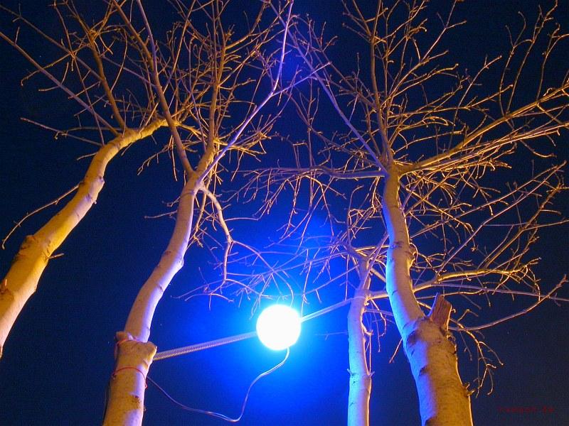 Allwetter LED-Leuchte schwingend flexibel eingespannt